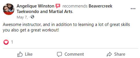 Adult2, Beavercreek Taekwondo and Martial Arts