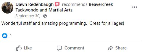 Adult3, Beavercreek Taekwondo and Martial Arts
